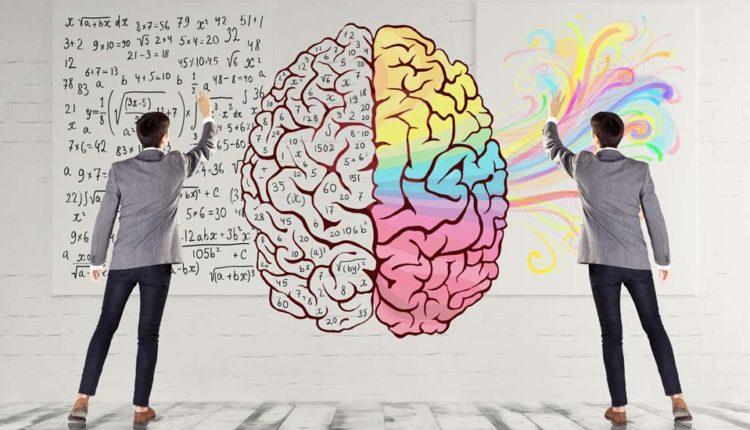 نیمکره راست و چپ مغز و هر آنچه درباره عملکرد آنها باید بدانید